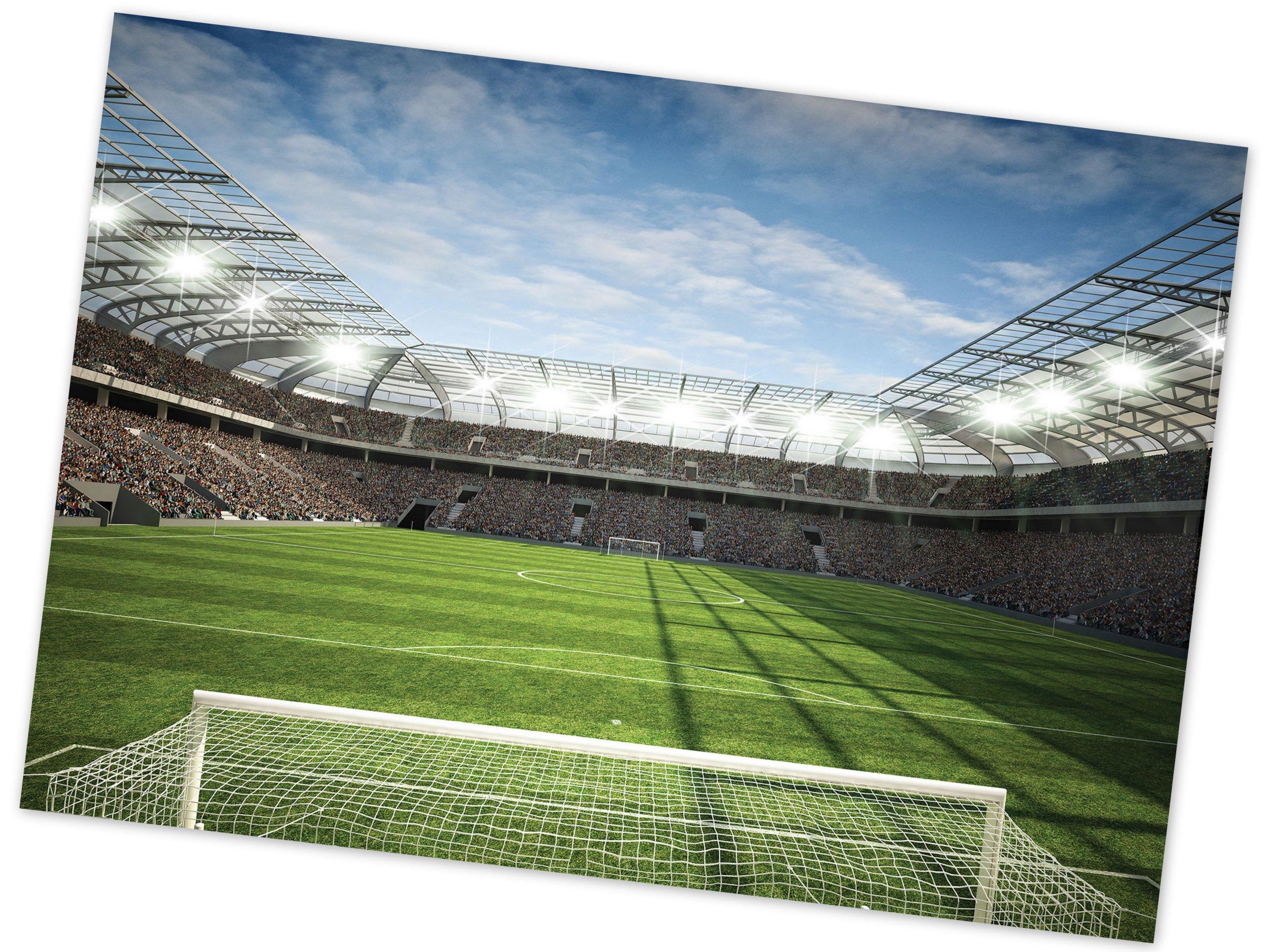 Nástenné maľby 3D futbalové ihrisko ŠTADIÓN 312x219 FLIZELINA