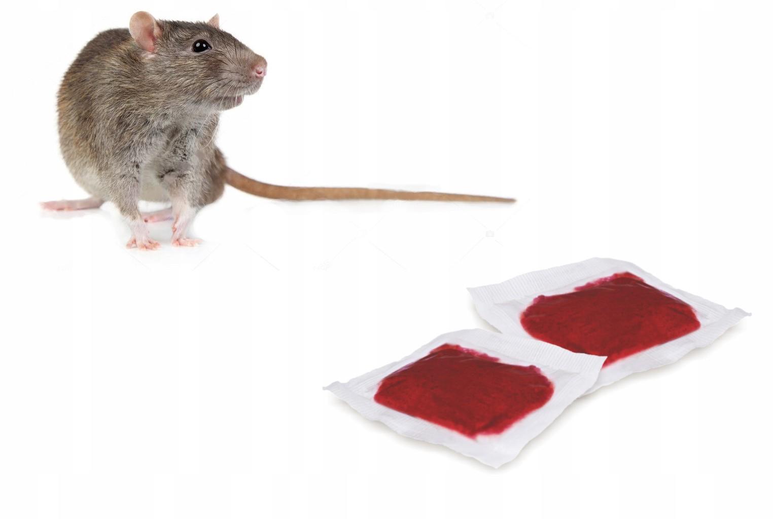 отрава для крыс фото финансах