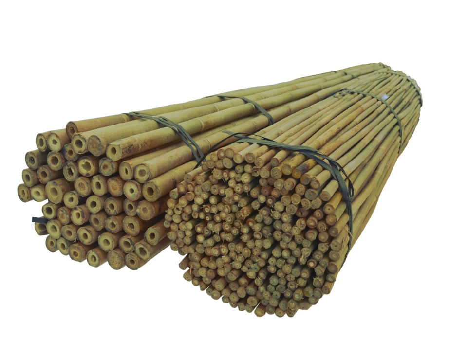 BAMBUSOVÉ TYČE 120 cm 10/12 mm /250 Ks, bambus