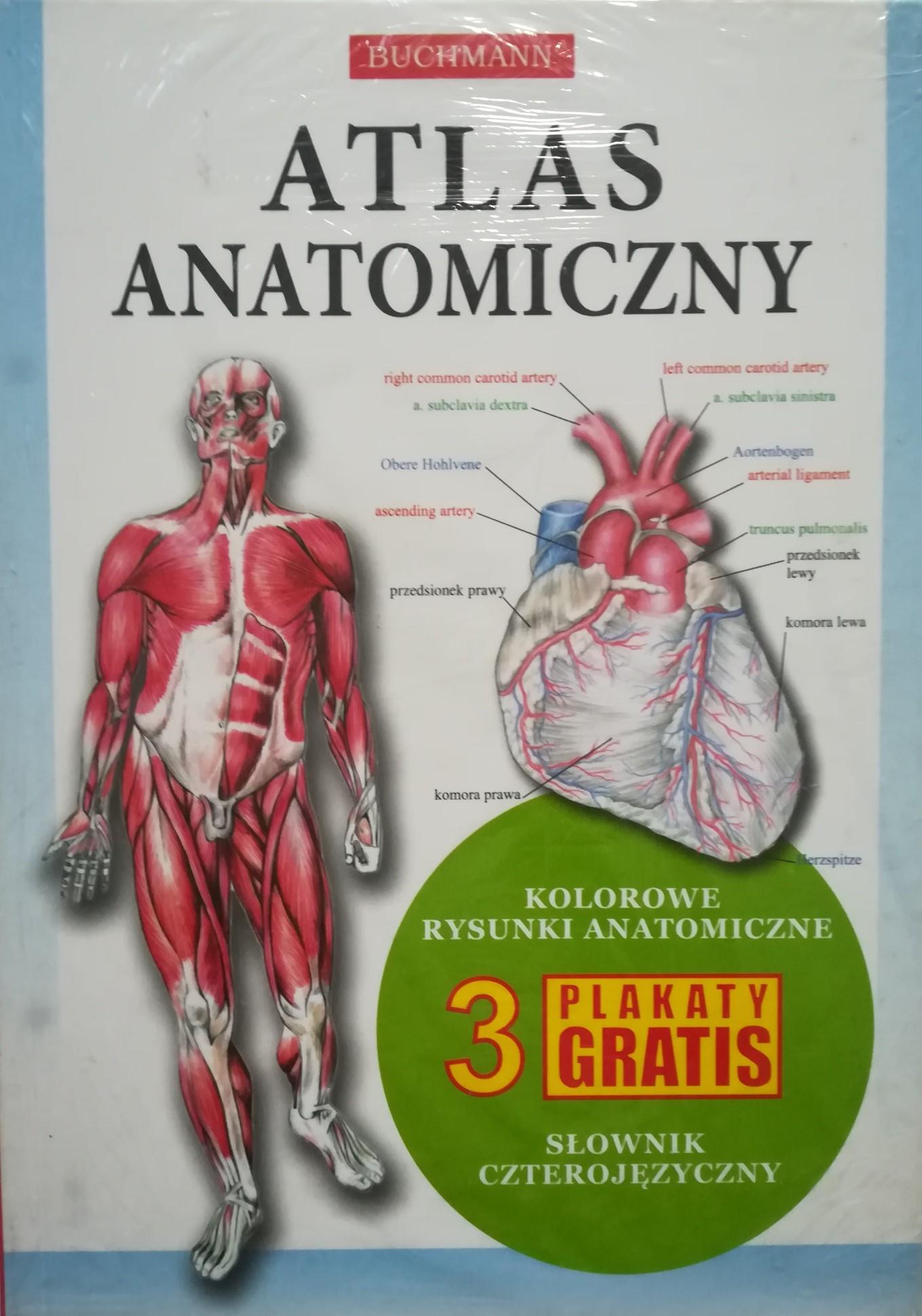 Atlas Anatomiczny Buchmann 3 Plakaty Nowa 7148276950