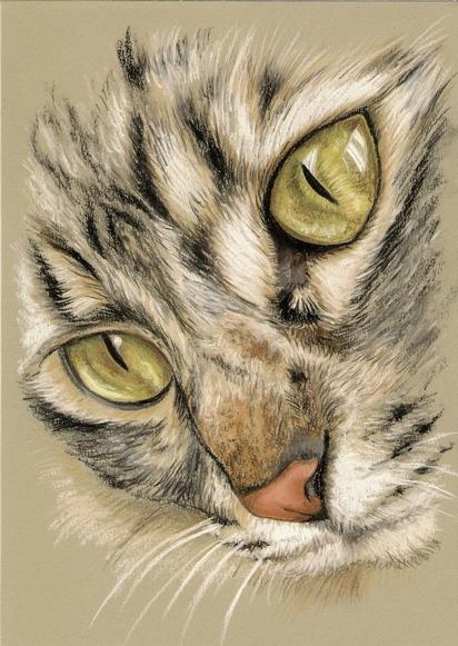 Rysunek Obraz Kot Kotek Na Prezent 7136370506 Oficjalne Archiwum