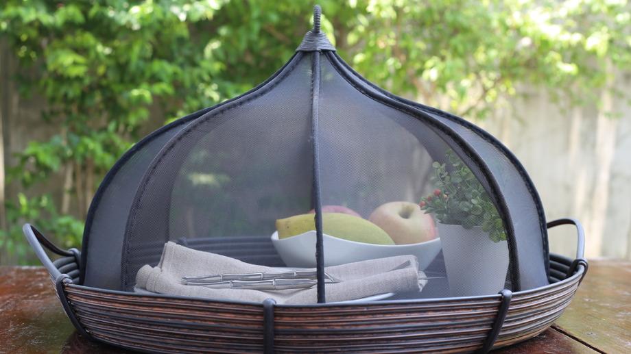 Muszki owocówki i inne owady – jak się ich pozbyć z kuchni?