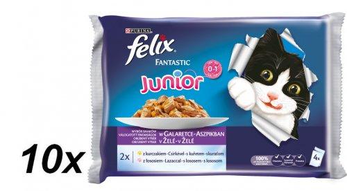Felix saszetki dla kota Fantastic Junior multipack