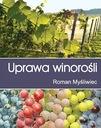 Uprawa winorośli ochrona odmiany choroby winnica