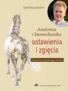 Anatomia i biomechanika ustawienia i zgięcia konia