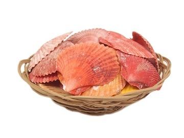 Morské more Shells Pectin 250g 25 ks