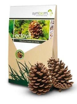 Микориза для деревьев хвойных пород и лиственных симбиомов