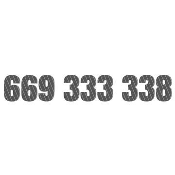 Złoty numer starter 669 333 338 669333338 OKAZJA