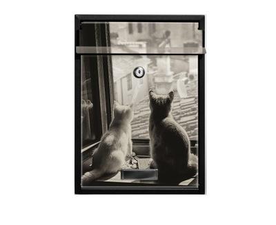 Schránka na List A4 Mačka NEZVYČAJNÉ