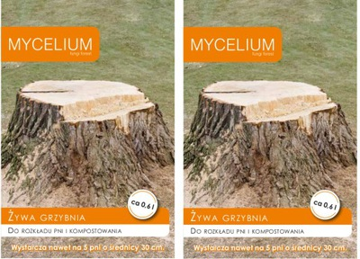 2 x ЖИВОЙ МИЦЕЛИЙ ??? распределение стволов деревьев MYCELIUM