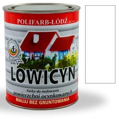 Lowicyn farby na streche je pozinkovaný plech MAT BIELEJ RAL9003 10 L