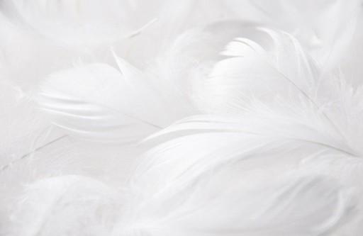 Piórka Pióra Dekoracyjne 15gram Białe Wielkanoc